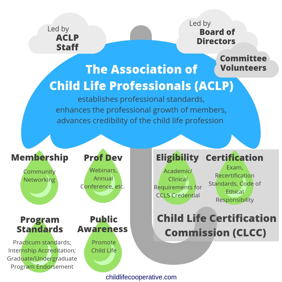 The Ultimate Guide To Becoming A Ccls Child Life Cooperative